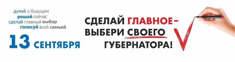 Выборы_губернатора