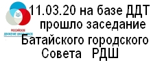 Афишка заведание горсовета РДШ