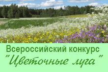 Афишка цветочные луга