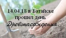 Афишка posadka-dereva