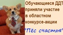 Афишка Пес на счастье 1